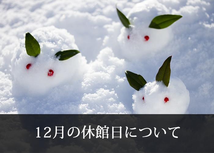 12月の休館日について